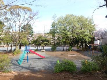 宮前平公園の画像4