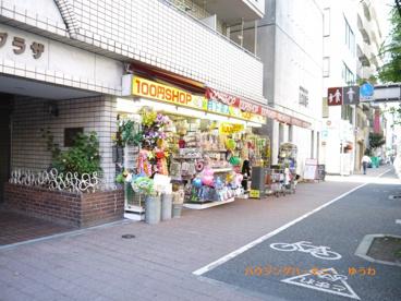 100円ショップ 月下美人の画像3