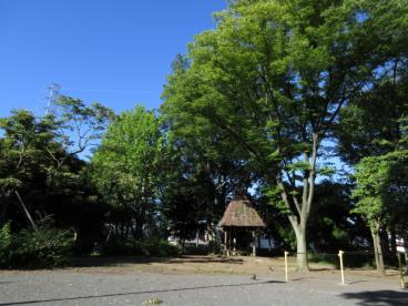 鷺沼公園の画像2