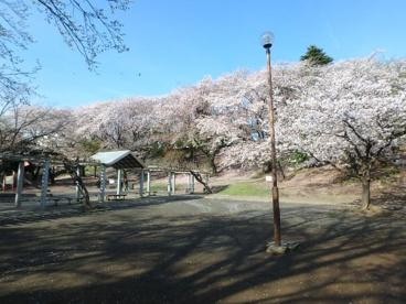 梶ケ谷第一公園の画像1