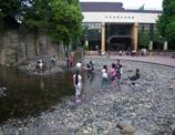 滝野川体育館