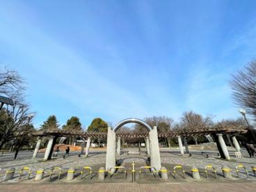 東京都立大泉中央公園の画像1