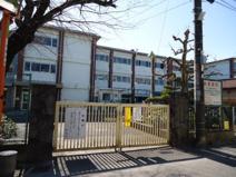 小金井市立 前原小学校