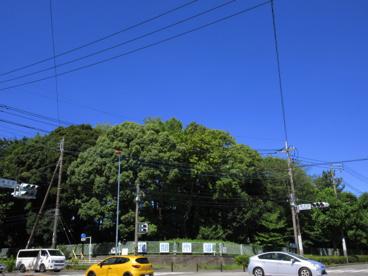 川崎市中央卸売北部市場商業協同組合の画像1