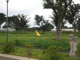 古舘遺跡公園