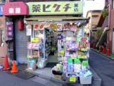 薬ヒグチ中井駅前店
