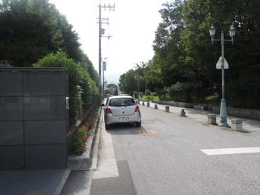 大阪府立槻の木高等学校の画像4