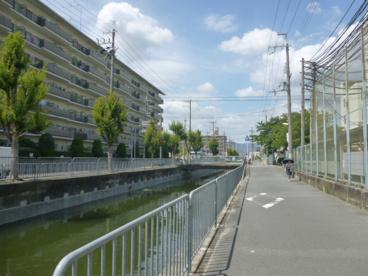 竹の内小学校の画像5