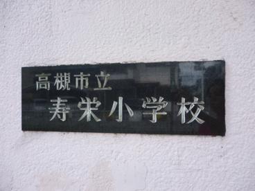 高槻市立 寿栄小学校の画像1