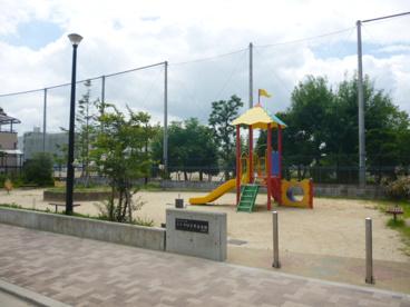 芝生幼稚園の画像4