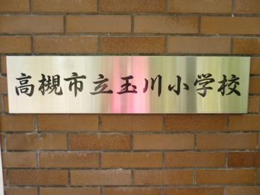 高槻市立 玉川小学校の画像1