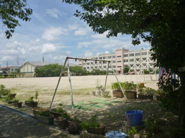 玉川幼稚園の画像3