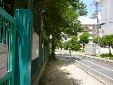 玉川幼稚園の画像4