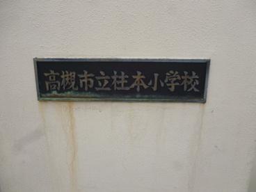 桂本幼稚園の画像1