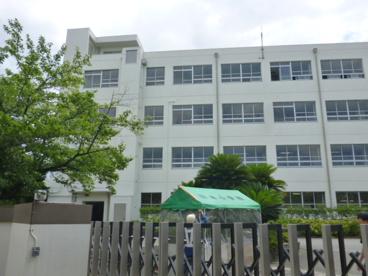 桂本幼稚園の画像2