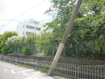 桂本幼稚園の画像4
