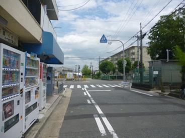 桂本幼稚園の画像5