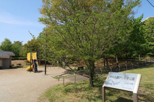 みなみ野かしの木公園の画像