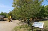 みなみ野かしの木公園