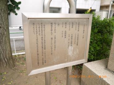 豊島区立 宮仲公園の画像5