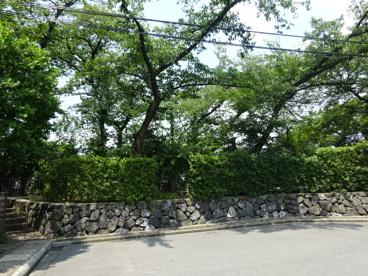 玉川橋保育園の画像5
