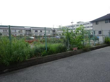 柳川保育所の画像5