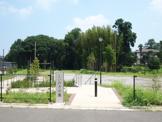 しいのき公園