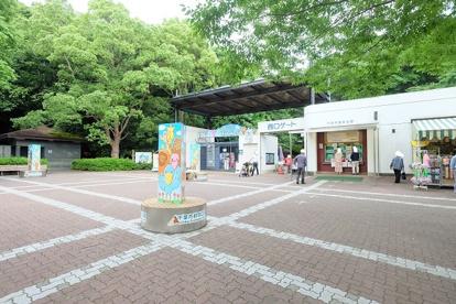 千葉市動物公園の画像1