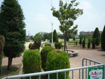桑田公園の画像2