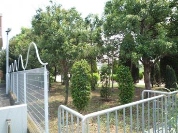 桑田公園の画像3