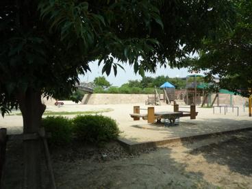 桑田公園の画像4