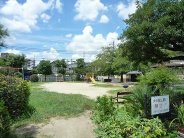 大池公園の画像4