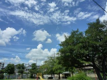 大池公園の画像5