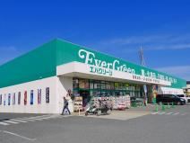 エバグリーン 桜井店