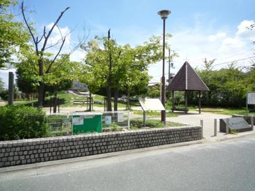 真砂四号公園の画像4