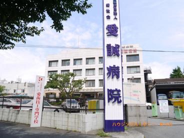 公益社団法人 愛世会 愛誠病院の画像1