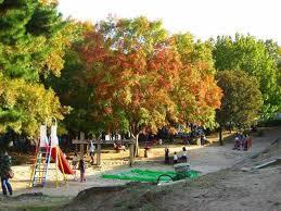 樋之池公園の画像