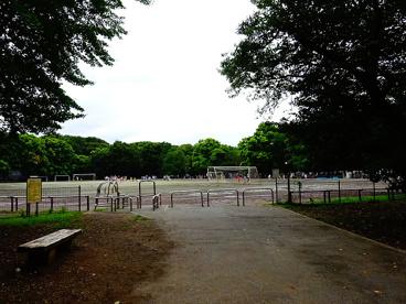 和田堀公園の画像1
