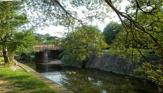 夙川河川敷公園