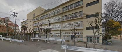 南ひばりガ丘中学校の画像1