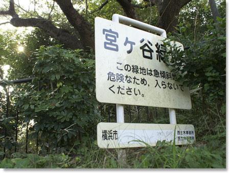 宮ケ谷緑地の画像