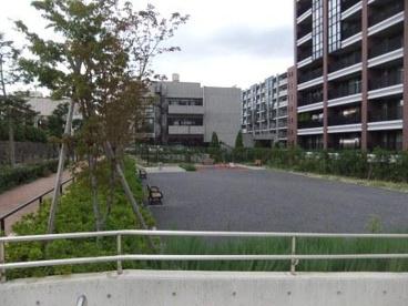 紅葉ケ丘公園の画像1