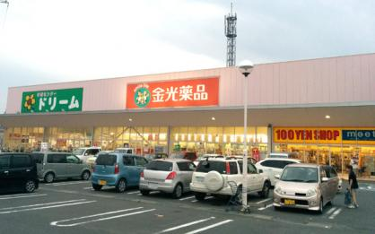 金光薬局 大安寺店の画像1