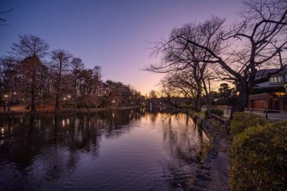 都立石神井公園の画像2