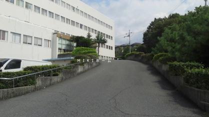 ガラシア病院の画像2