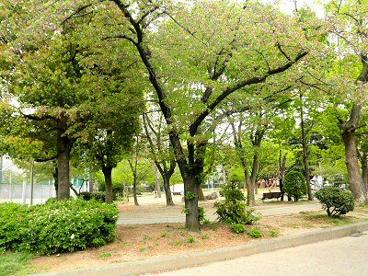 真田山公園の画像3