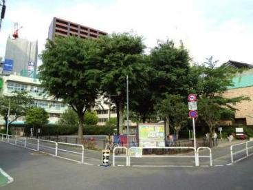 平塚中央公園の画像1