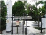 柴崎中央公園