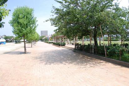 田井西公園の画像1