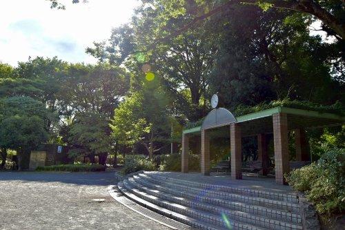 練馬区立大泉公園の画像